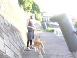 チョロタンのお散歩